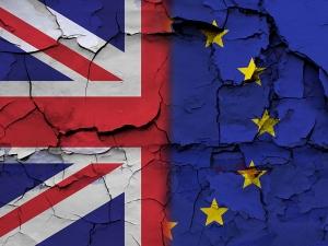BREXIT BLOG: Enact 'no deal' plans